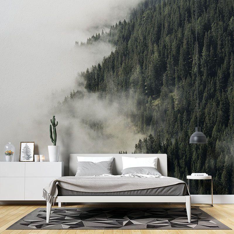 Fototapeta Las w Chmurze