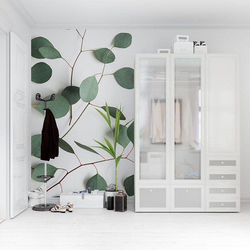 Fototapeta Liście eukaliptusa na białym tle efekt 3D