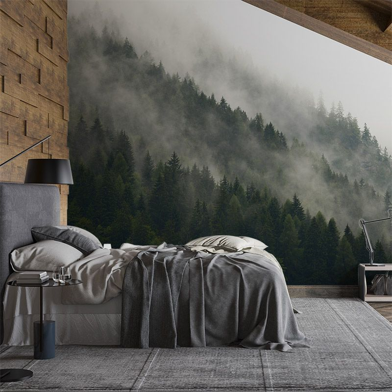 Fototapeta las na wzgórzu we mgle