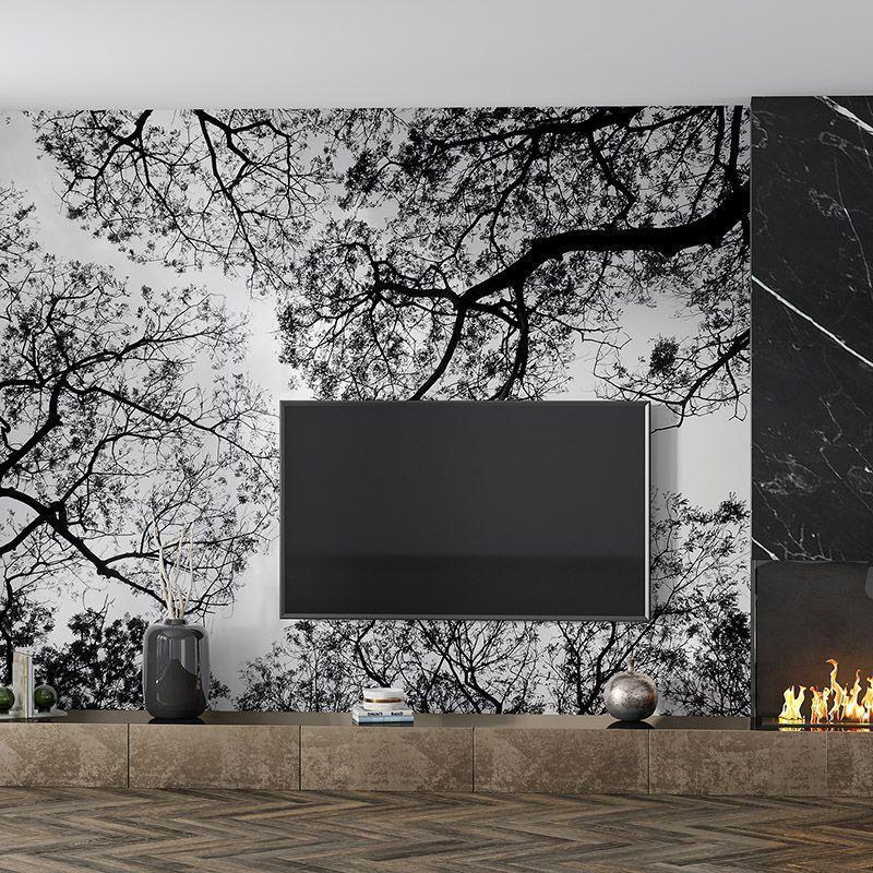 Fototapeta Czarne gałęzie drzew na tle nieba