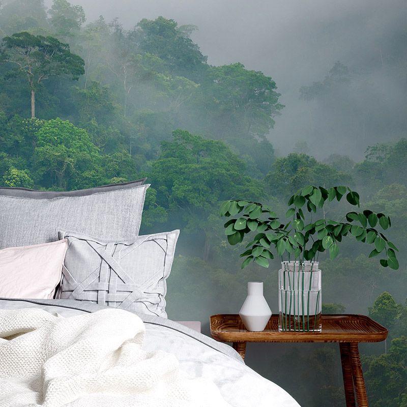 Fototapeta Poranna mgła w lesie deszczowym