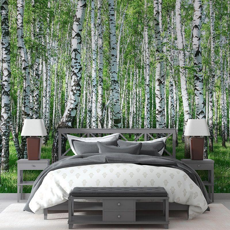 Fototapeta Wiosenny brzozowy las