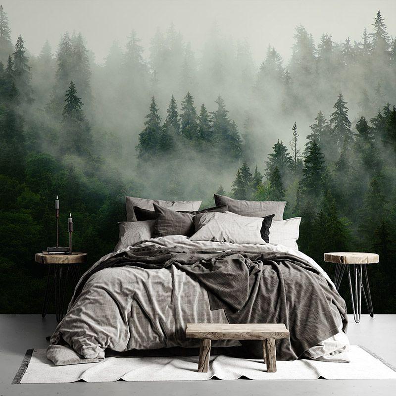 Fototapeta jodłowy las we mgle - najbardziej popularny las we mgle
