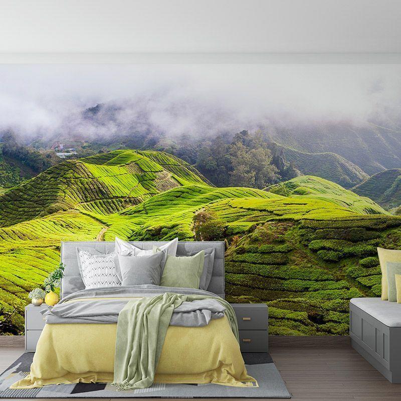 Fototapeta Zielone wzgórza, plantacja herbaty w Malezji